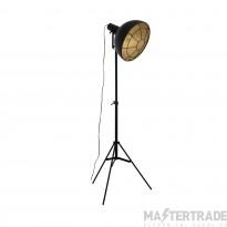 Eglo 49674 Cannington 1 Light Floor Light In Black And Gold