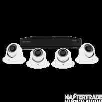 ESP 4 Channel Full HD 2TB CCTV System