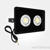 Eterna FLOOD120 Floodlight LED 120W