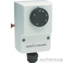 Secure HCT2 Thermostat 13A 10-90C