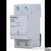 FuseBox IT1002U 100A 2P Connector