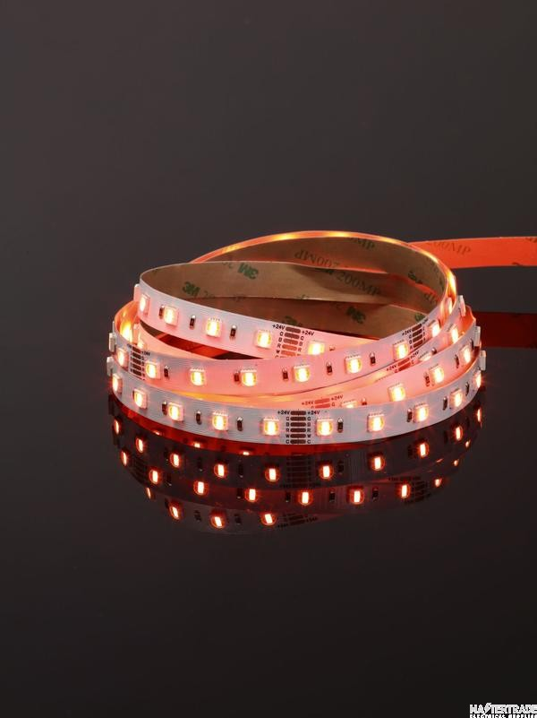 Forum ELA-34296 24V DC RGBWCCT IP65 Dimmable LED Tape 19.2W/m 12mm-  5 Metre