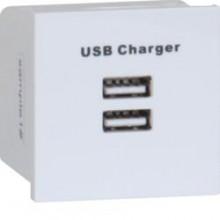 Hager WMMUSB USB Euromodule Socket Whi